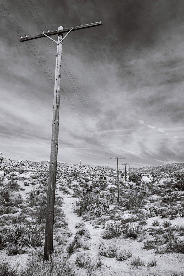 Mojave bw detail