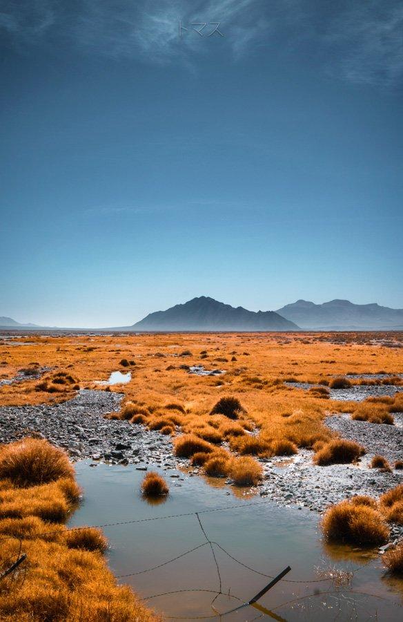 Mojave landscape